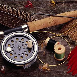 Охотничьи и рыболовные магазины Кожино